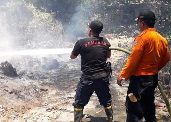 Nusabali.com - cuaca-panas-picu-terbakarnya-tumpukan-kayu