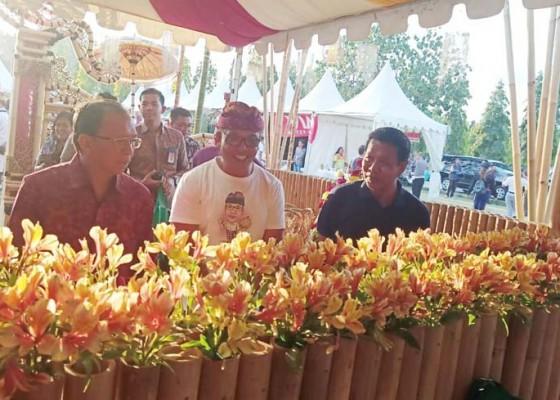 Nusabali.com - pesona-florikultura-buleleng