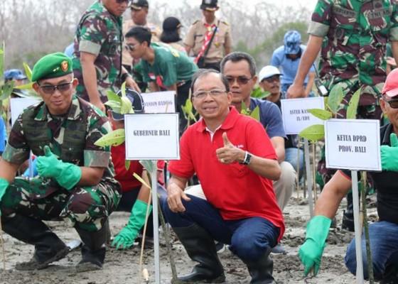 Nusabali.com - gubernur-rancang-hutan-kota-di-areal-eks-reklamasi-pelindo