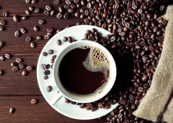 Nusabali.com - bisnis-kopi-bali-yang-kian-manis