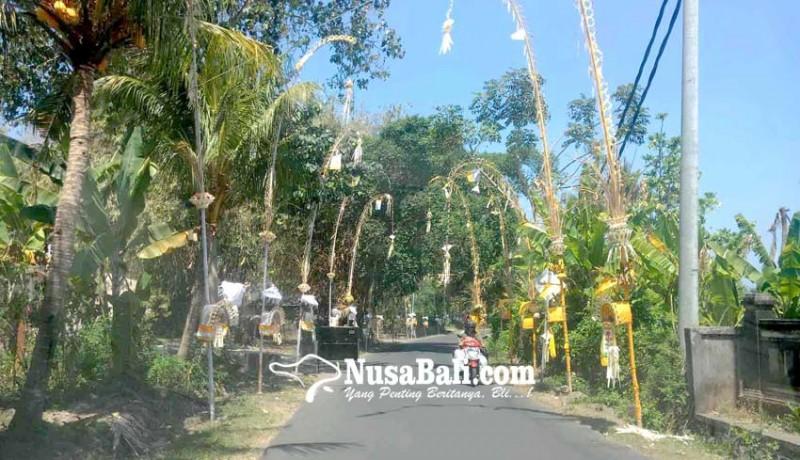 www.nusabali.com-desa-asak-gelar-nyepi-adat-pelanggar-nabrak-penjor