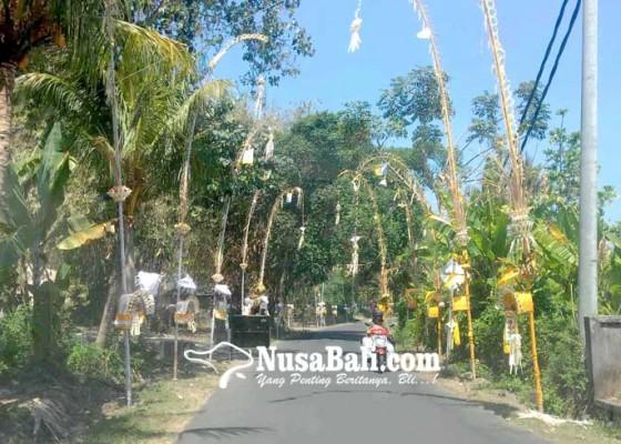 Nusabali.com - desa-asak-gelar-nyepi-adat-pelanggar-nabrak-penjor