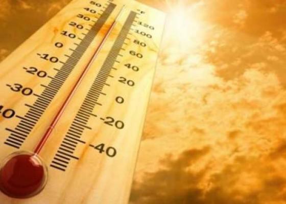 Nusabali.com - cuaca-panas-rentan-kebakaran