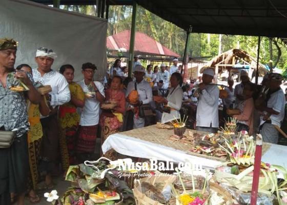 Nusabali.com - manusa-yadnya-massal-di-pura-ratu-pasek-pundukdawa