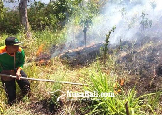 Nusabali.com - lereng-selatan-gunung-agung-terbakar
