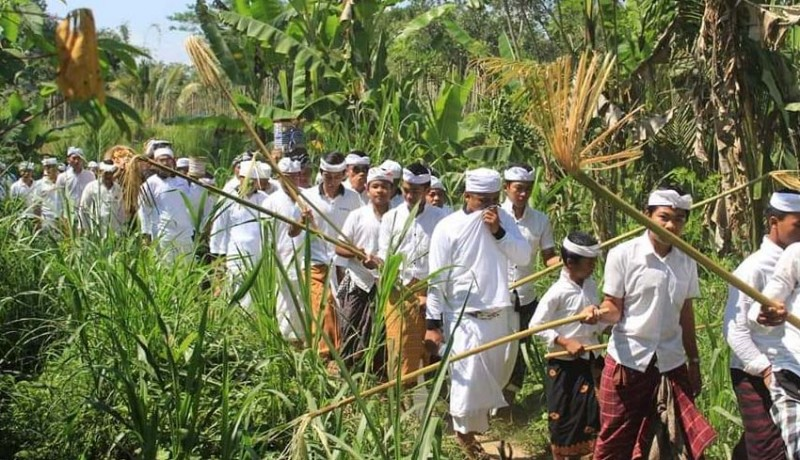 www.nusabali.com-diiringi-gambelan-kulkul-dengan-lelontekan-pohon-ketugtug