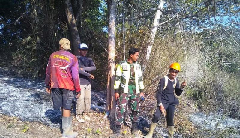 www.nusabali.com-tni-siapkan-pasukan-khusus-hadapi-kebakaran-hutan