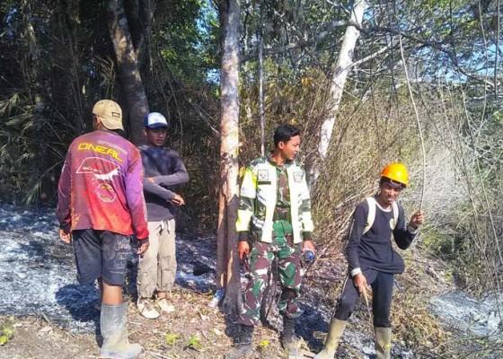 Nusabali.com - tni-siapkan-pasukan-khusus-hadapi-kebakaran-hutan