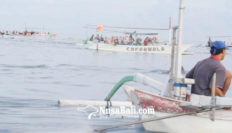 www.nusabali.com-tarif-wisata-dolphin-diseragamkan