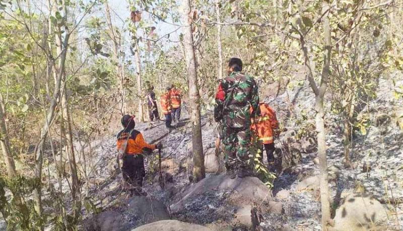 www.nusabali.com-belasan-hektare-lahan-warga-terbakar