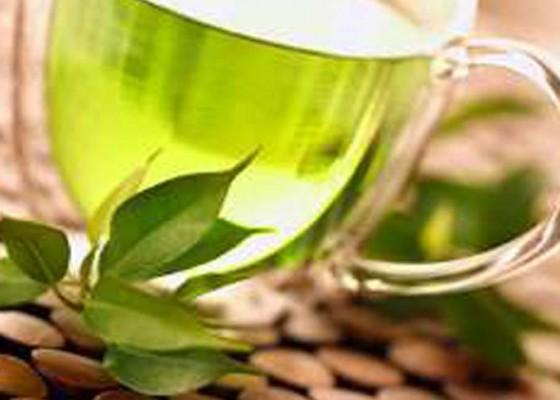 Nusabali.com - upaya-dongkrak-industri-teh-indonesia