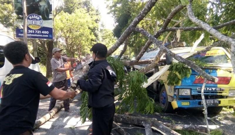 www.nusabali.com-truk-tertimpa-pohon-sopir-alami-luka-luka