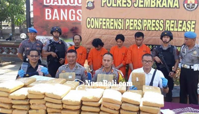 www.nusabali.com-polisi-gagalkan-penyelundupan-978-kg-ganja-kering-di-gilimanuk