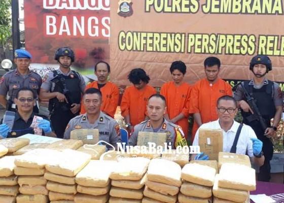 Nusabali.com - polisi-gagalkan-penyelundupan-978-kg-ganja-kering-di-gilimanuk
