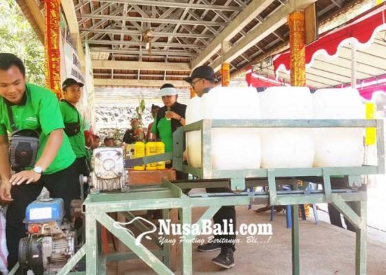 Nusabali.com - 73-persen-cengkih-di-buleleng-terserang-jap