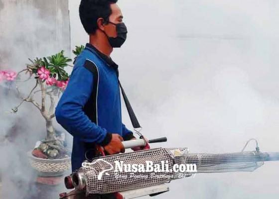 Nusabali.com - jelang-musim-hujan-fogging-digencarkan