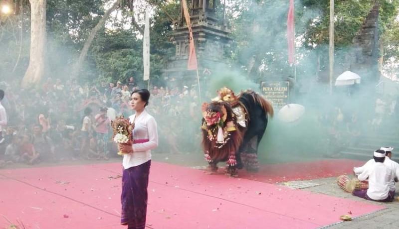 www.nusabali.com-desa-kukuh-gelar-parade-barong-bangkung-di-dtw-alas-kedaton