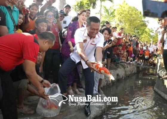 Nusabali.com - warga-keramas-pelihara-koi-di-sungai
