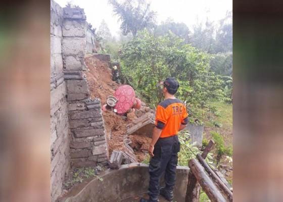 Nusabali.com - pohon-tumbang-dan-longsor-nihil-korban-jiwa