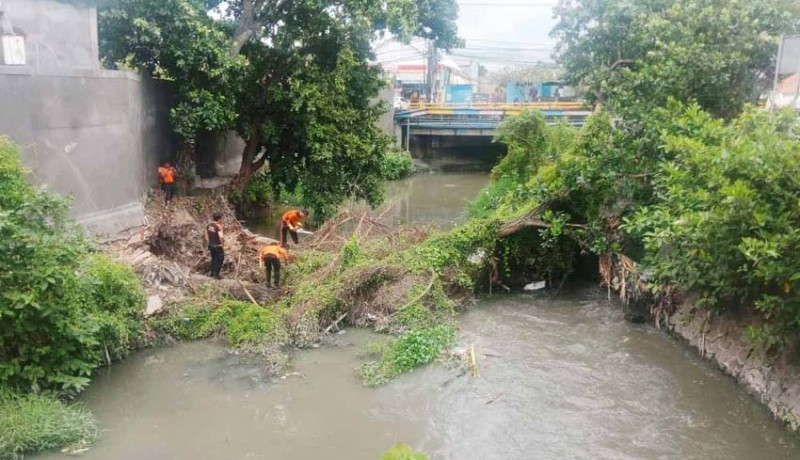 www.nusabali.com-evakuasi-pohon-terkendala-cuaca-akan-dilanjutkan-hari-ini