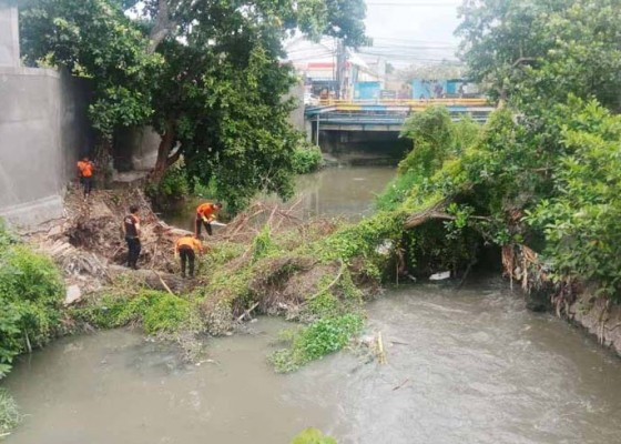 Nusabali.com - evakuasi-pohon-terkendala-cuaca-akan-dilanjutkan-hari-ini