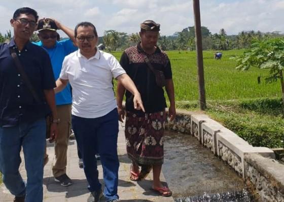 Nusabali.com - bank-indonesia-beri-pendampingan-tiga-desa-wisata-di-bali
