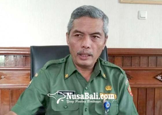 Nusabali.com - pengajuan-anggaran-supervisi-pilkada-rp-1-miliar-dipangkas-jadi-rp-700-juta