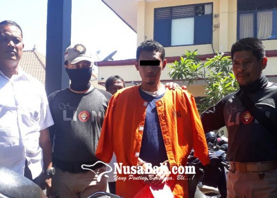 Nusabali.com - ayam-satu-kandang-dicuri-buruh-bangunan