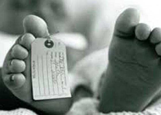Nusabali.com - sadis-bayi-tewas-usai-dimasukkan-mesin-cuci