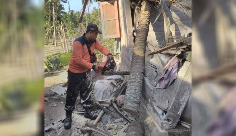 www.nusabali.com-pohon-kelapa-timpa-rumah-korban-terluka