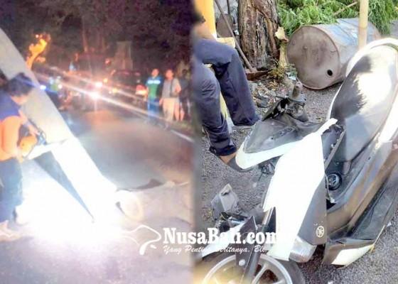 Nusabali.com - pemotor-tertimpa-pohon-tumbang