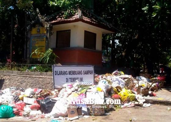 Nusabali.com - papan-larangan-buang-sampah-tertutup-sampah