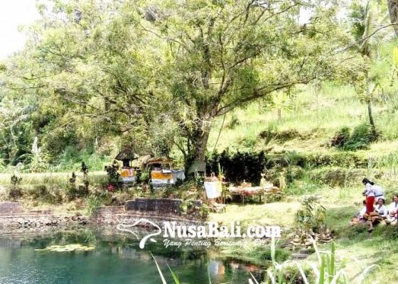 Nusabali.com - debit-air-mengecil-krama-subak-gelar-pakelem