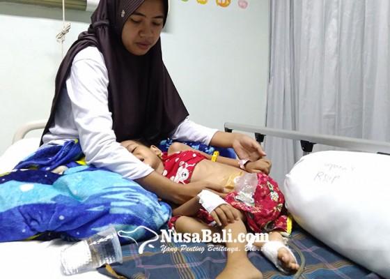 Nusabali.com - pengidap-tumor-asal-lombok-dirawat-di-rsup-sanglah