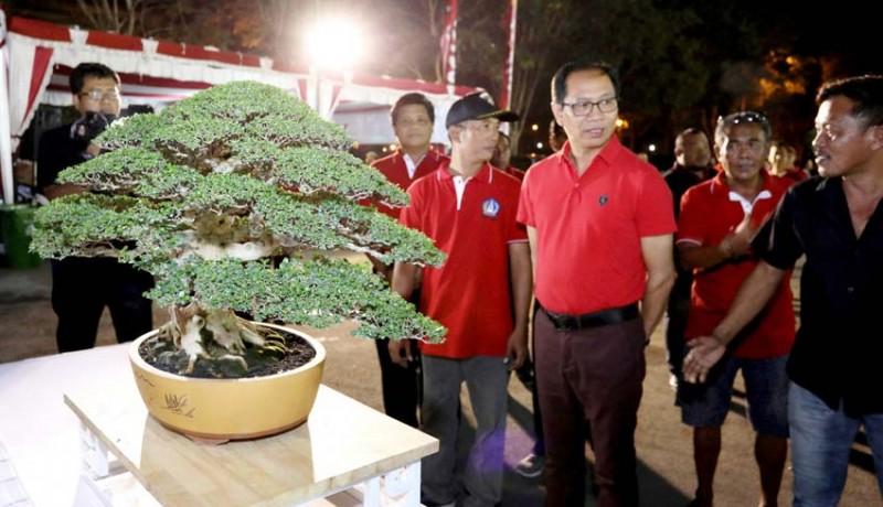 www.nusabali.com-badung-gelar-kontes-bonsai-berskala-nasional