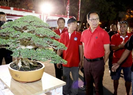 Nusabali.com - badung-gelar-kontes-bonsai-berskala-nasional