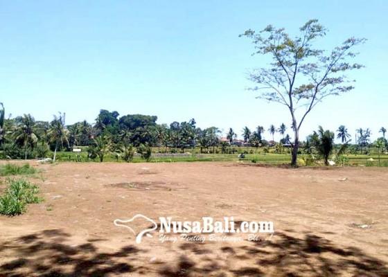 Nusabali.com - rencana-pembangunan-taman-bung-karno-ngambang
