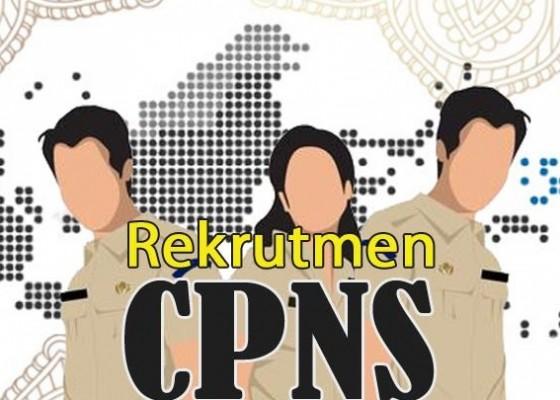 Nusabali.com - 500-pelamar-cpns-langsung-diverifikasi