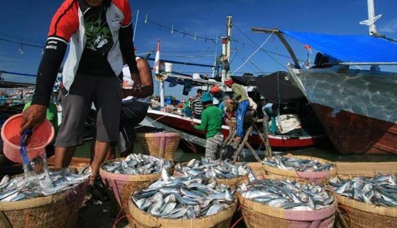 www.nusabali.com-ikan-dan-udang-andalan-ekspor-bali