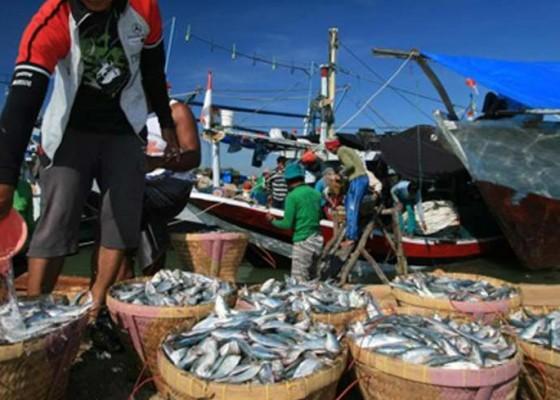 Nusabali.com - ikan-dan-udang-andalan-ekspor-bali