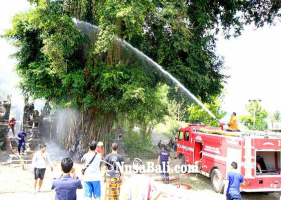 Nusabali.com - beringin-keramat-terbakar