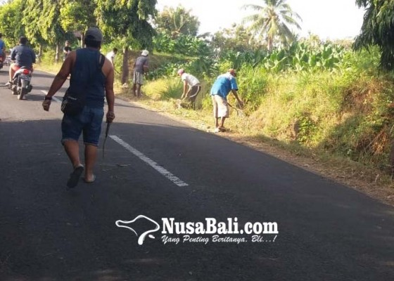 Nusabali.com - antisipasi-banjir-dlh-buleleng-bersihkan-drainase
