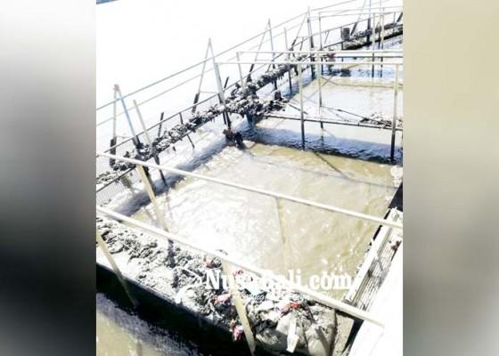 Nusabali.com - pengerukan-lumpur-rampung-pasokan-air-bersih-mulai-normal
