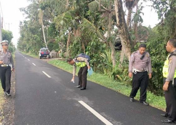 Nusabali.com - pelajar-smp-tewas-ditabrak-mobil