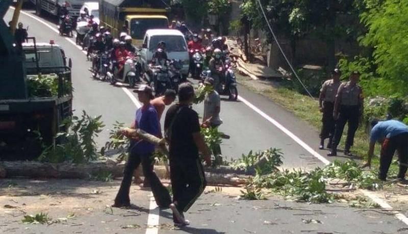www.nusabali.com-jelang-musim-hujan-polisi-lakukan-pemangkasan-pohon
