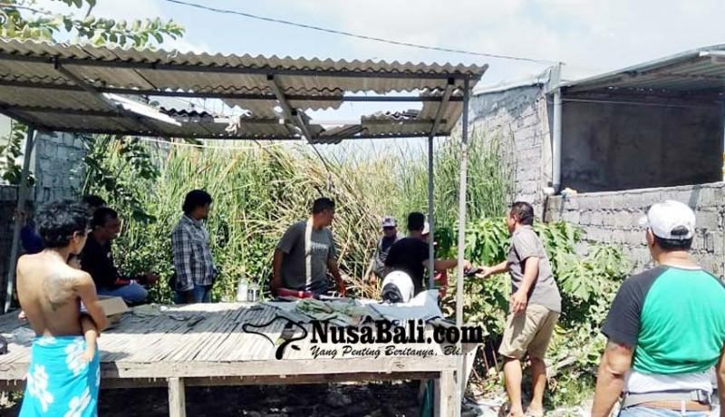 www.nusabali.com-polisi-tetapkan-satu-tersangka-penebasan-di-pemogan