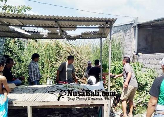Nusabali.com - polisi-tetapkan-satu-tersangka-penebasan-di-pemogan