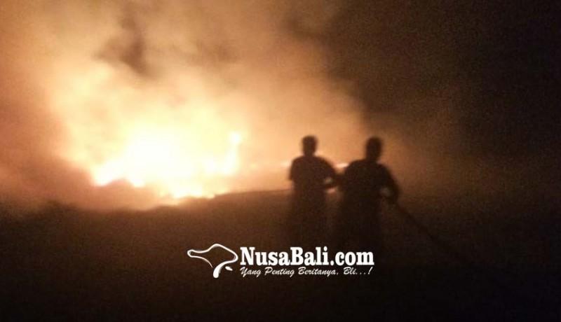 www.nusabali.com-kebakaran-tumpukan-sampah-dan-semak-kering-kagetkan-warga