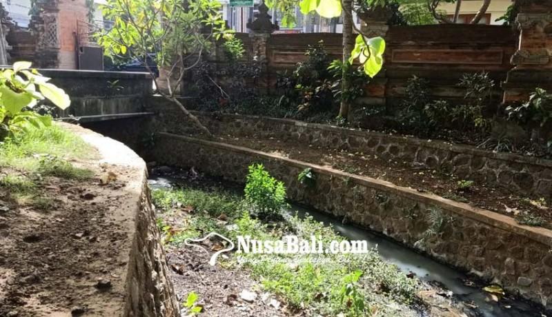 www.nusabali.com-diduga-limbah-air-sungai-depan-kantor-camat-kutsel-keruh