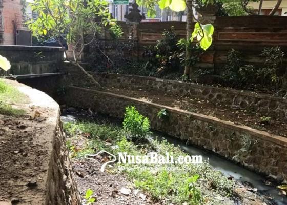 Nusabali.com - diduga-limbah-air-sungai-depan-kantor-camat-kutsel-keruh
